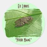 Spring Peeper (Pseudacris crucifer) Treefrog Items Round Stickers
