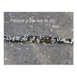 Spring Petals Rumi Joy Postcard