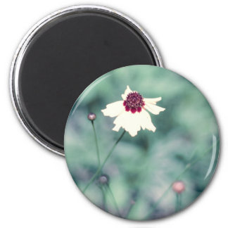 Spring Photography Blooming Flower Fridge Magnets