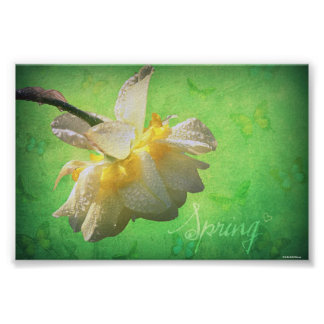 Spring♥ Poster