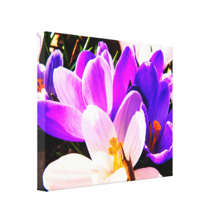 Spring Purple Flowers Canvas Print