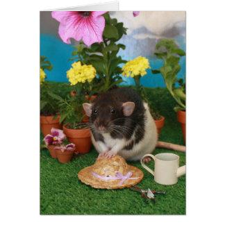 Spring Rat Card