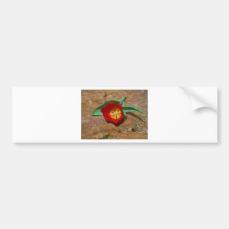 Spring Red Tulip Bumper Sticker
