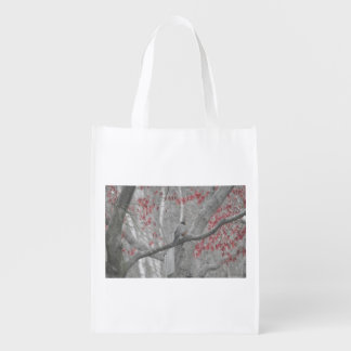 Spring Robin in the Old Red Maple Tree Market Tote