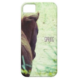 spring siesta iPhone 5 case
