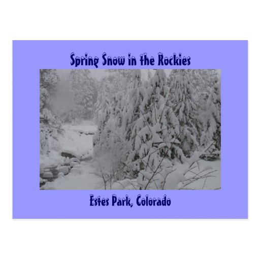Spring Snow in the Rockies Postcard