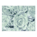 Spring Soft Green Roses + Satin Bouquet, template Post Card