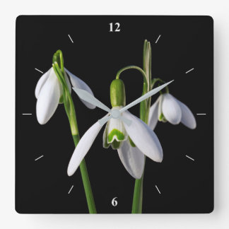 Spring Springs Eternal Square Wall Clock