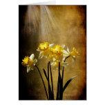 Spring Sun - Greeting Card