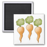 Spring Things · Carrots Magnet