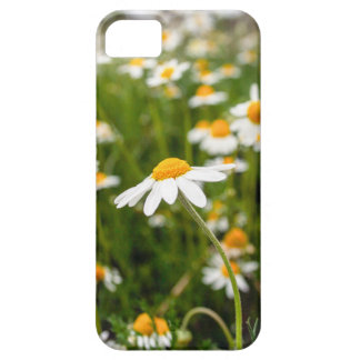 spring time barely there iPhone 5 case