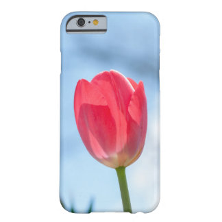 Spring Time Barely There iPhone 6 Case