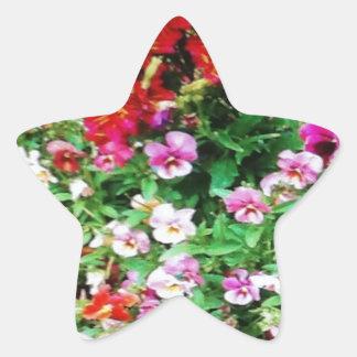 Spring Time Beauty Star Sticker