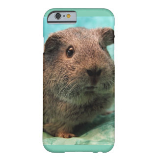 Spring Time Guinea Pig Phone Case