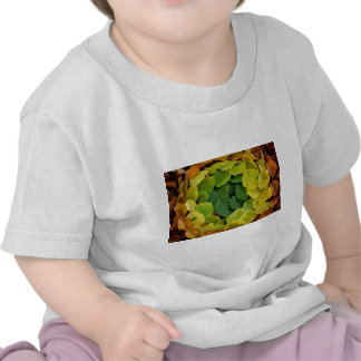 Spring to Fall Circle of Leaves T-shirt