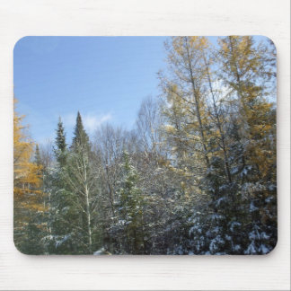 Spring Trees Colours Mouse Pad