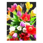 Spring Tulip Flowers Postcard
