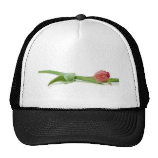 spring tulip mesh hat