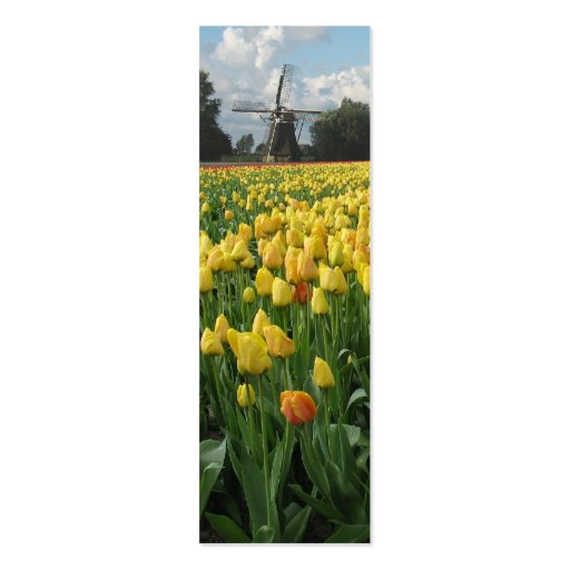 Spring Tulips and Windmill Business Cards