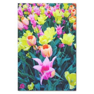 """Spring Tulips at Madison Square Park, NYC 10"""" X 15"""" Tissue Paper"""