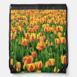 Spring tulips bloom in front of old barn. drawstring bag