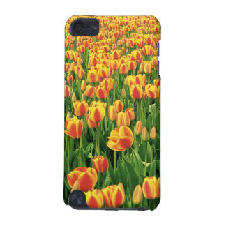 Spring tulips bloom in front of old barn. iPod touch (5th generation) cover