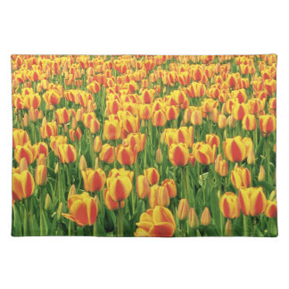 Spring tulips bloom in front of old barn. placemat