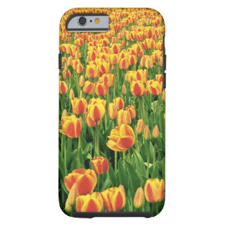 Spring tulips bloom in front of old barn. tough iPhone 6 case