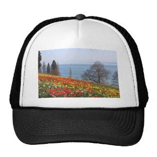 Spring Tulips by the Sea Trucker Hat