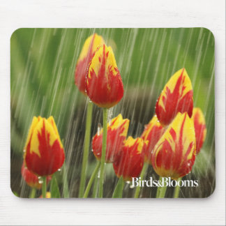 Spring Tulips Mouse Mat