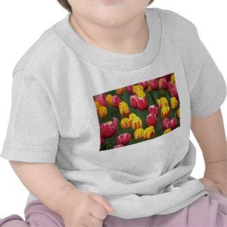 Spring Tulips T-Shirt