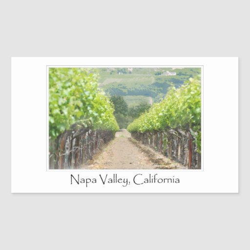Spring Vineyard in Napa Valley California Rectangular Sticker