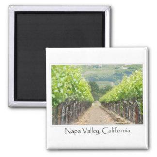 Spring Vineyard in Napa Valley California Square Magnet