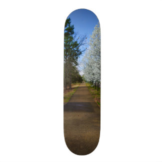 Spring Walk 18.1 Cm Old School Skateboard Deck