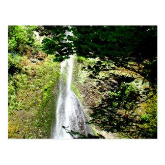 Spring Waters Postcard