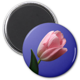 Spring Wedding Tulip Magnet