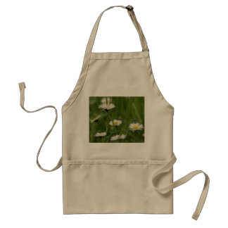 Spring Wild Daisies Standard Apron