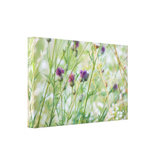 Spring wild flowers canvas print
