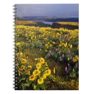 Spring wildflowers in abundance at the Tom Spiral Notebook