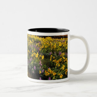 Spring wildflowers in abundance at the Tom Two-Tone Coffee Mug