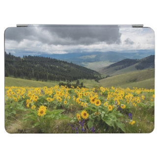 Spring Wildflowers In The Hills iPad Air Cover