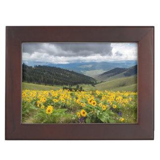 Spring Wildflowers In The Hills Keepsake Box