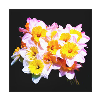 Spring Yellow Daffodil Square Canvas Canvas Print