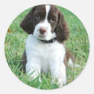 Springer Puppy Stickers
