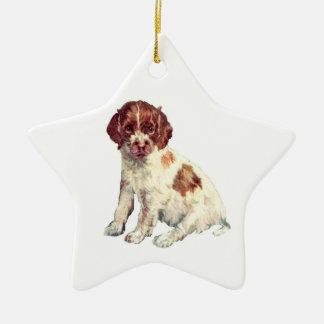 Springer Spaniel Ceramic Star Decoration