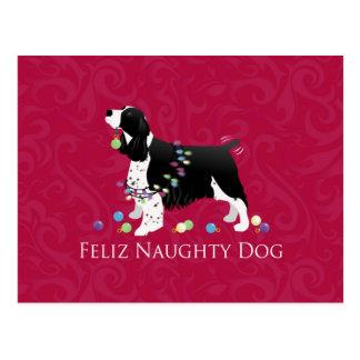 Springer Spaniel Christmas Design Postcard
