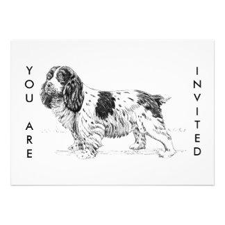 Springer Spaniel Dog Drawing Personalized Announcement