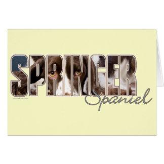 Springer Spaniel Eyes Cards