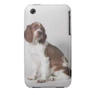Springer spaniel iPhone 3 Case-Mate cases