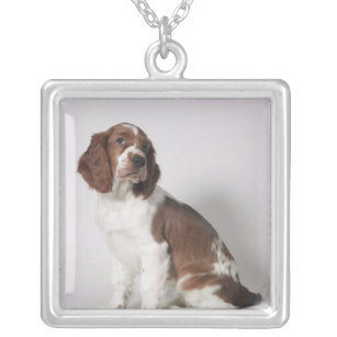 Springer spaniel silver plated necklace